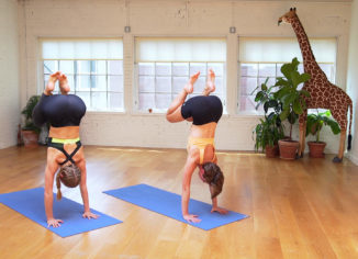 Yoga Training Courses: For Balance